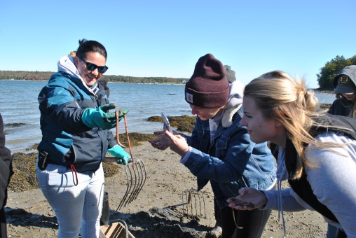 Students can play an important role to support research and information sharing about shellfish